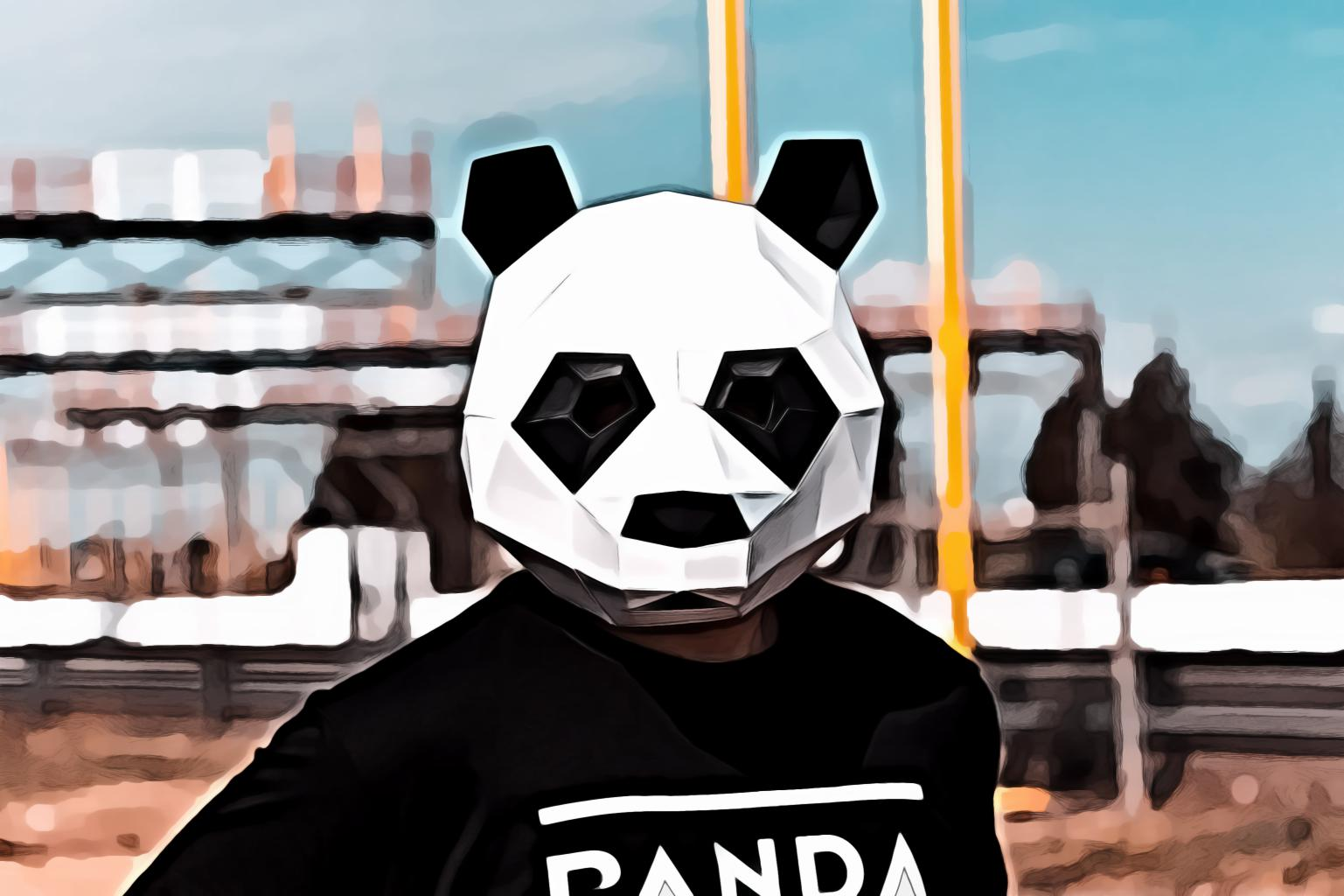 Person wearing white and black panda full face mask